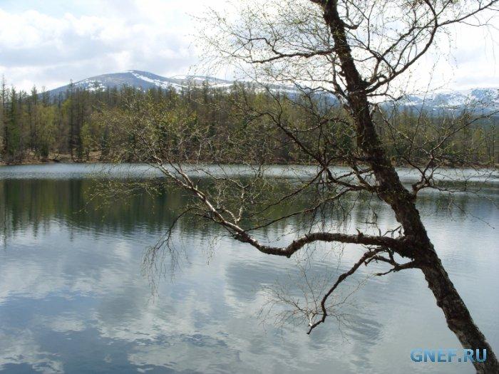Загадки озера