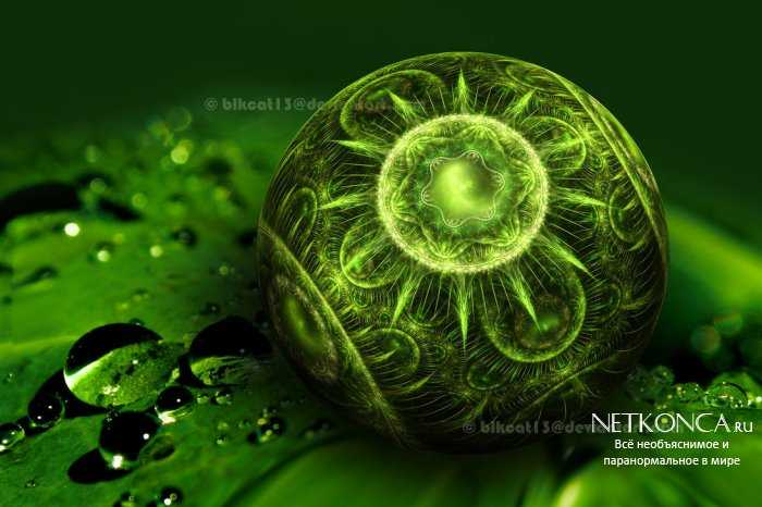 Зеленая магия
